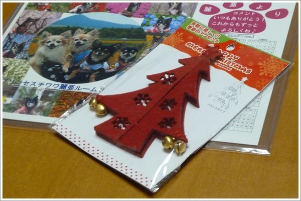 2011129-2_20111209205524.jpg