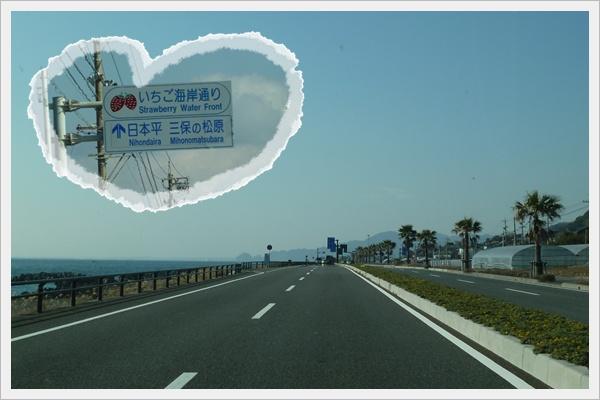 2012114-1.jpg