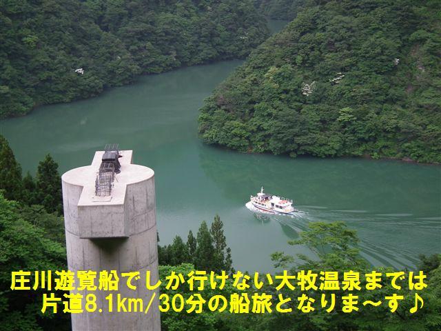 週末の庄川遊覧船 (4)
