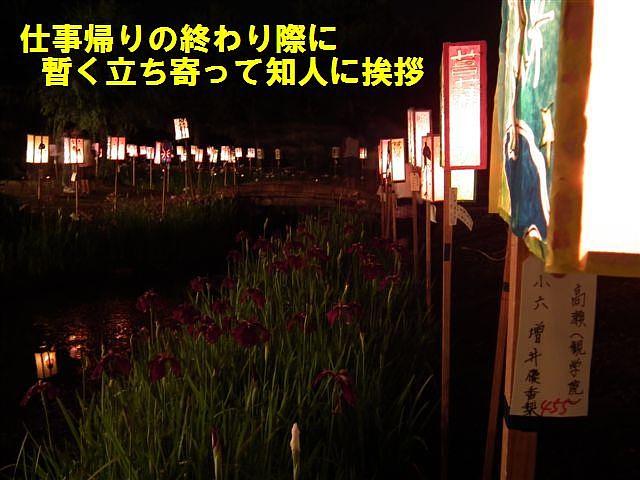 高瀬遺跡菖蒲まつり (2)