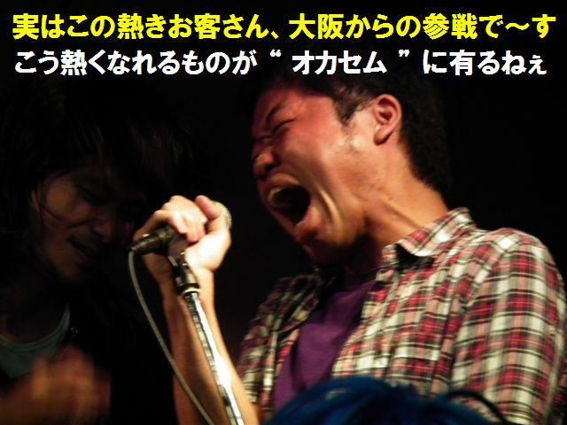 大感謝祭ツアー (15)