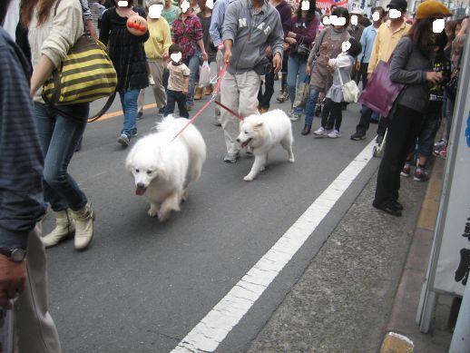 川越祭り 10月17日 11