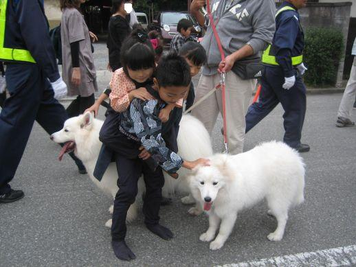 川越祭り 10月17日 14