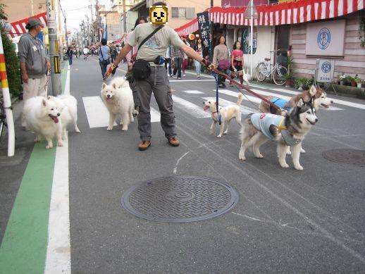 川越祭り 10月17日 16