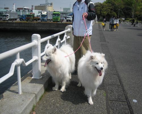 2011 4月21日 横浜 2