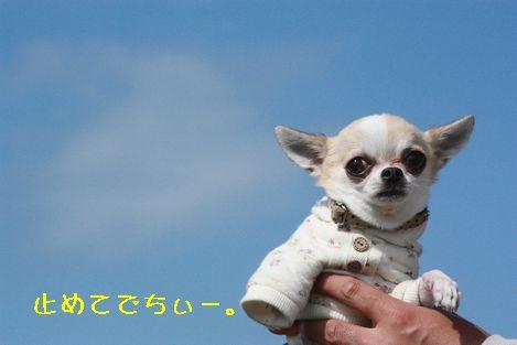 IMG_81630.jpg