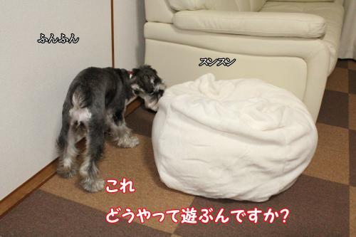 005@_convert_20120101010124.jpg