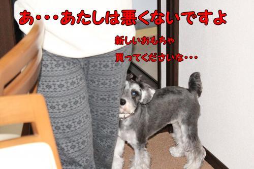 2011-12-23+001@_convert_20111228233049.jpg
