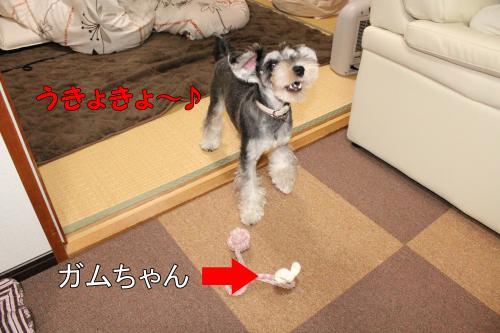 2011-12-23+017@_convert_20111224001724.jpg