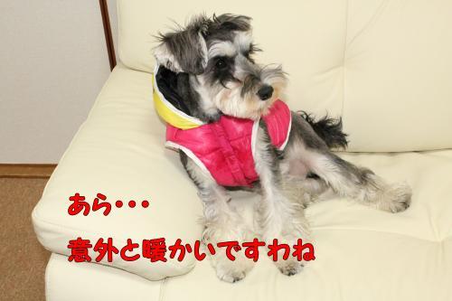 2011-12-24eos+028@_convert_20111225124345.jpg