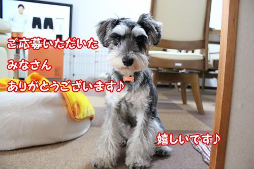 2012-01-09eos+020@_convert_20120114012528.jpg