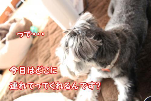 2012-01-09eos+041@_convert_20120119223152.jpg
