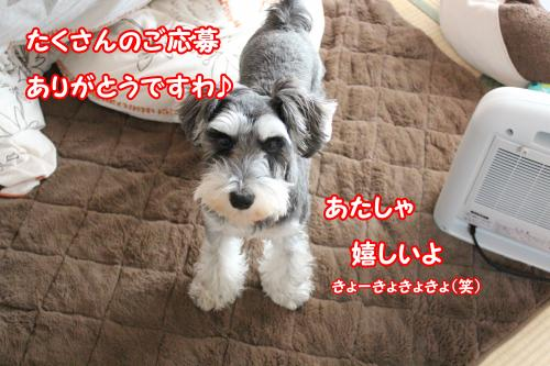 2012-01-09eos+044@_convert_20120117214519.jpg