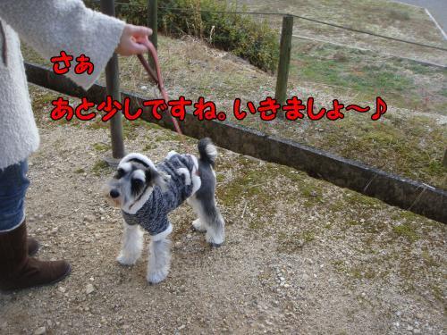 DSC05471@_convert_20111225015149.jpg