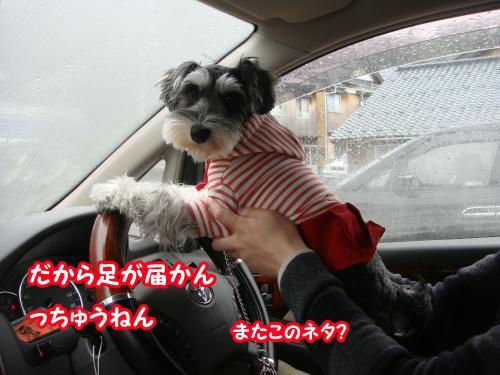 DSC05707@_convert_20120104224657.jpg