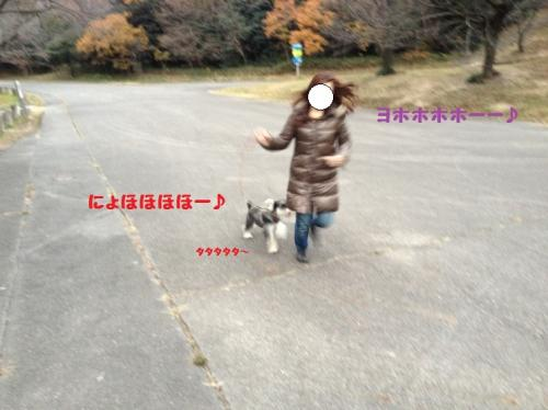 IMG_1166@4_convert_20111211213426.jpg