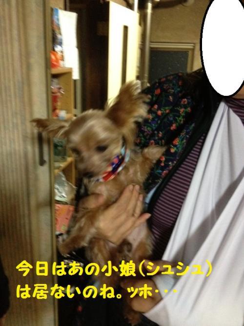 IMG_4560@_convert_20111206222538.jpg