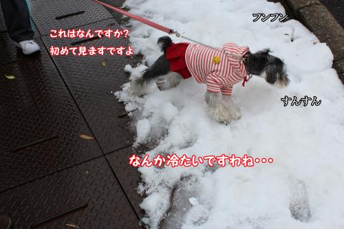 eos+015@_convert_20120104111256.jpg