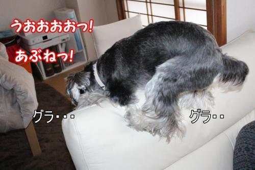 eos+019@_convert_20120118222428.jpg
