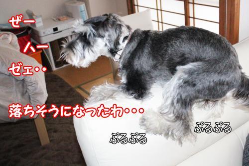eos+020@_convert_20120118222559.jpg