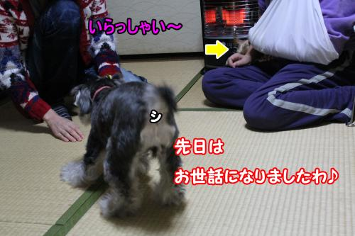 eos+023@_convert_20120109212010.jpg