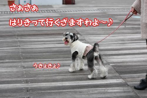 eos+033@_convert_20120122002711.jpg