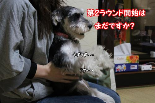 eos+043@_convert_20120109212657.jpg
