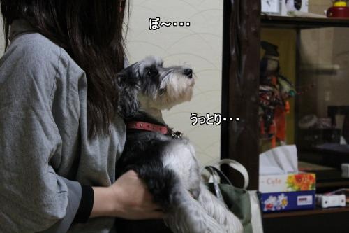 eos+044@_convert_20120109212749.jpg