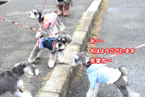 eos+094@_convert_20120122151600.jpg