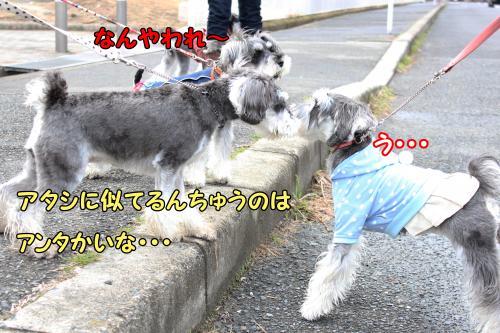 eos+096@_convert_20120122151415.jpg