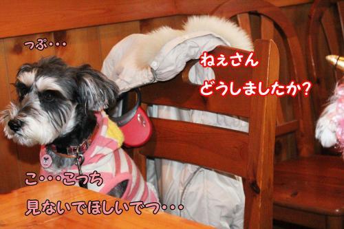 eos+195@_convert_20120123225632.jpg