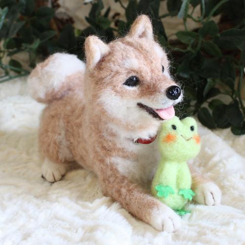 柴犬ユザワヤ