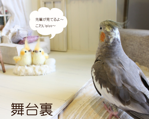 オカぴよちゃん2
