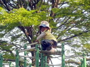 ジャングルジム