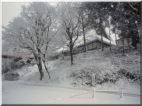 2012004yabu.jpg