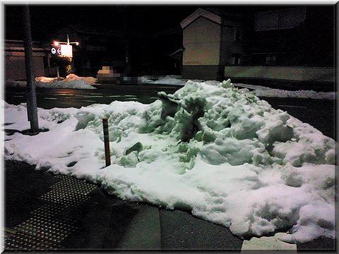 20120103yuki.jpg