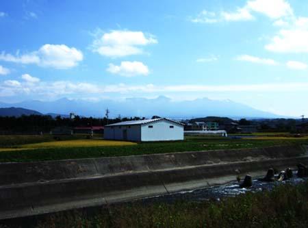 suwa_4_02.jpg