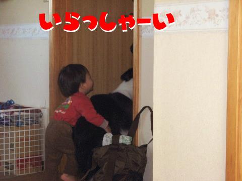 IMG_0002_11.jpg