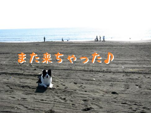 IMG_0006_7.jpg