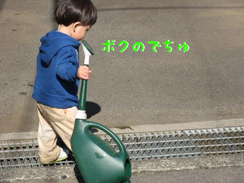 IMG_0007_11.jpg