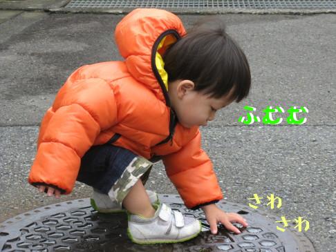 IMG_0011_8.jpg