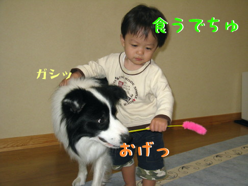 IMG_0015_7.jpg