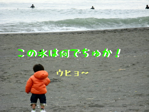 IMG_0016_11.jpg