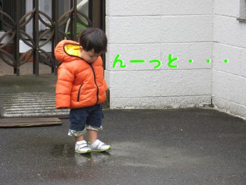 IMG_0017_5.jpg