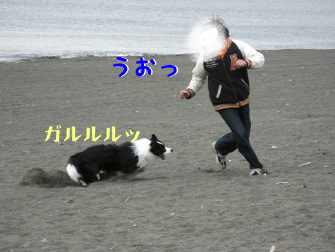 IMG_0021_6.jpg