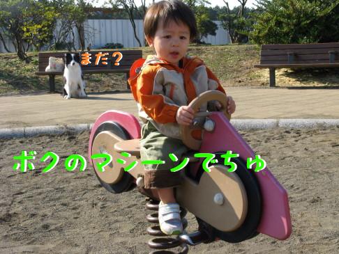 IMG_0021_7.jpg
