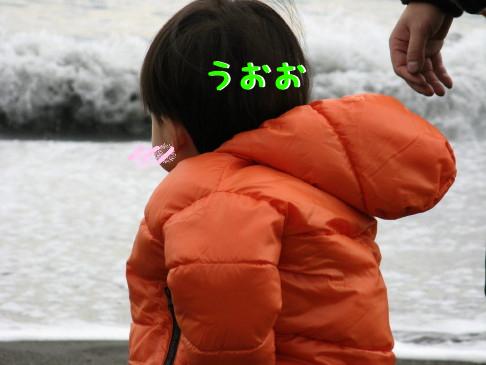 IMG_0022_7.jpg