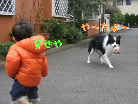 IMG_0023_6.jpg