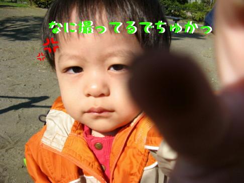 IMG_0024_2.jpg