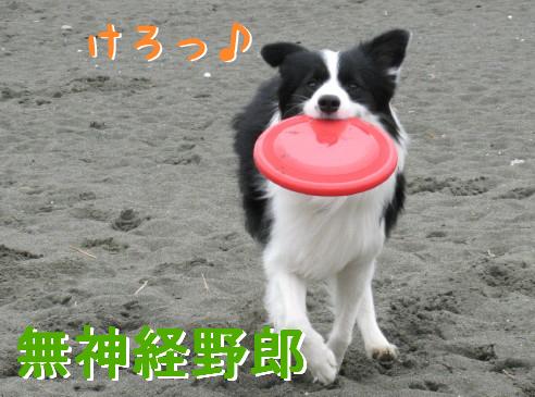 IMG_0025_8.jpg